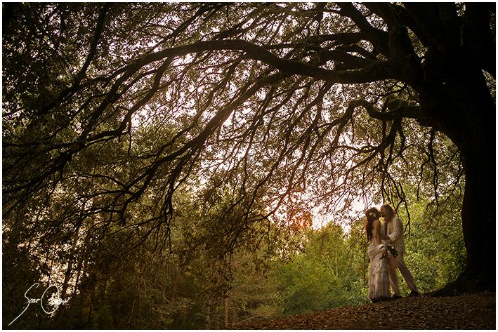 Fotografo de boda terrassa - Fotografos en terrassa ...